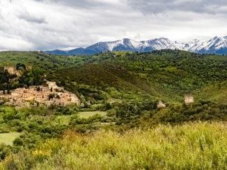Der grüne Roussillon. Vor den Pyrenäen regnen sich –besonders im Frühjahr und Herbst – die Wolken ab. Dann ist es rings um Castelnou besonders grün. Foto: Hilke Maunder