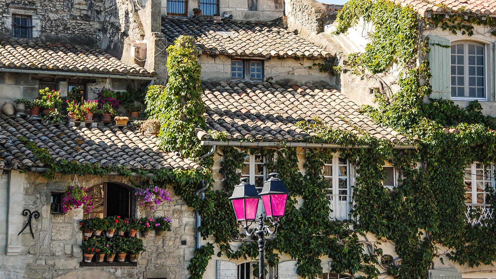 Arles: Straßenlampen in Lila schmücken das Rhôneufer. Foto: Hilke Maunder