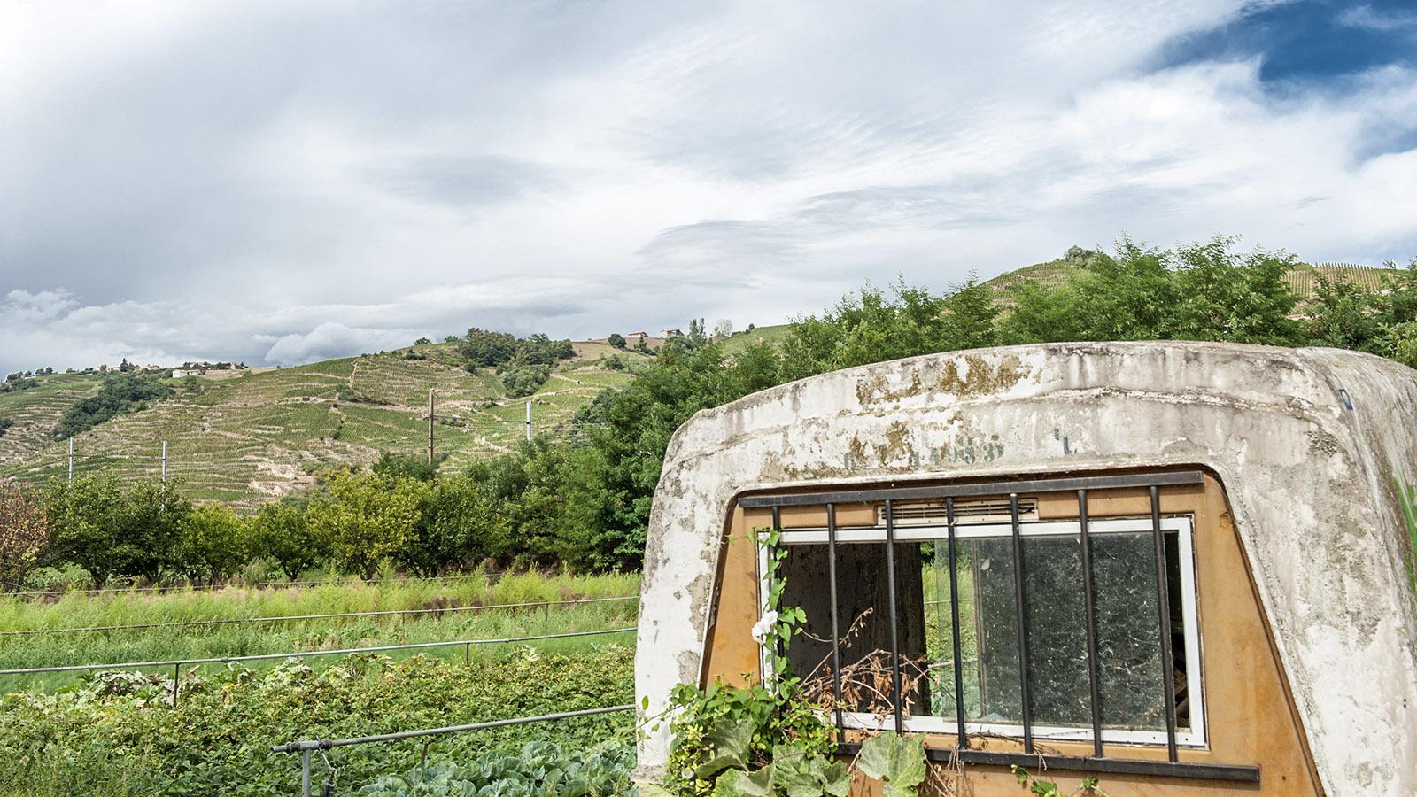 Gemüsefeld be Ampuis, Foto: Hilke Maunder