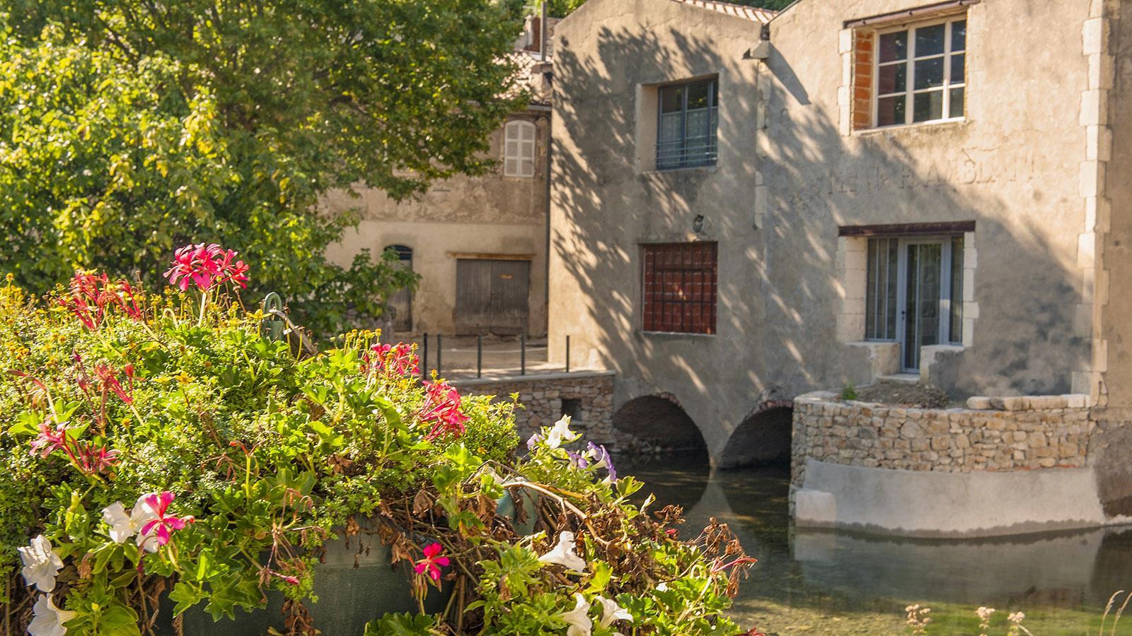 Bourg Saint-Andeol: Wassermühle. Foto: Hilke Maunder
