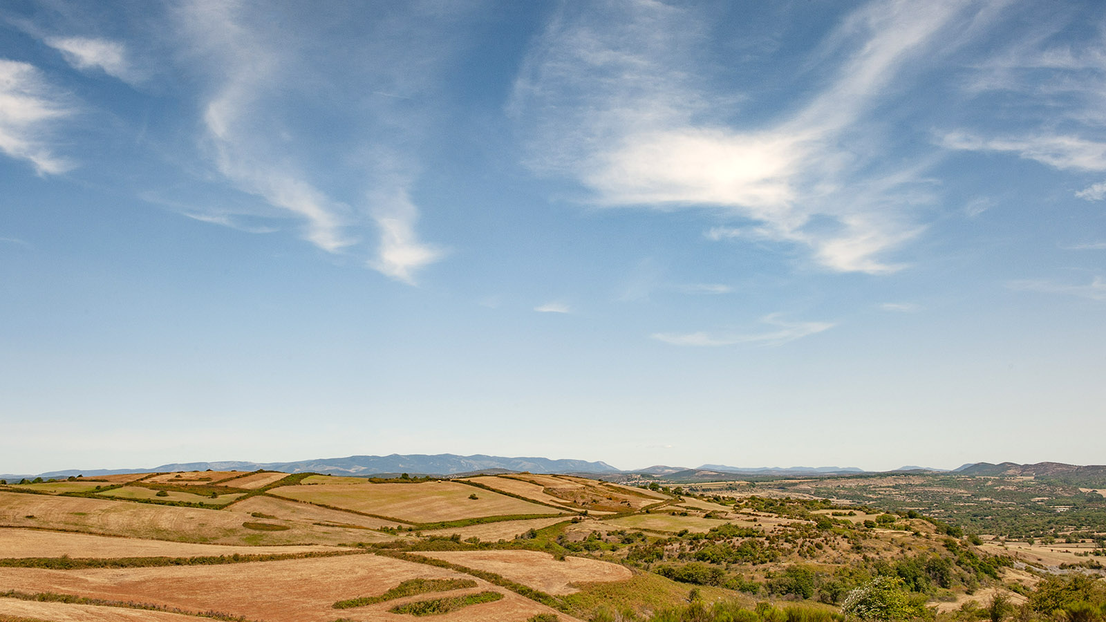 Der Causse de Larzac bei Le Caylar. Foto: Hilke Maunder