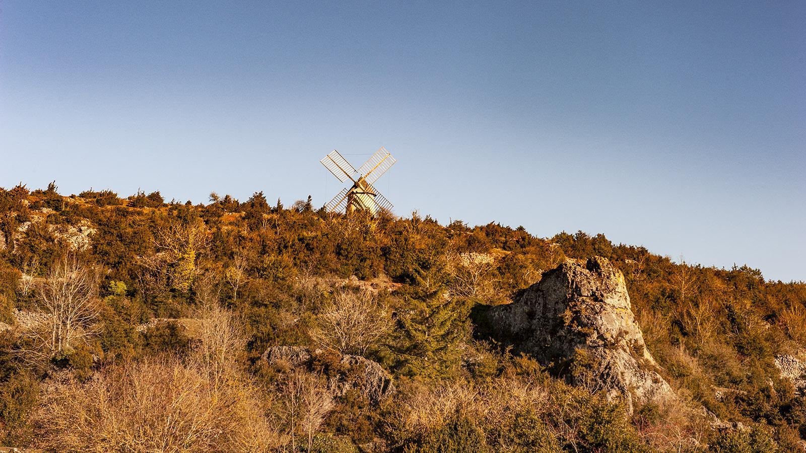 Auf dem Causse de Larzac erheben sich bis heute –wie hier bei La Couvertoirade –Windmühlen aus der Landschaft des Hochplateaus. Foto: Hilke Maunder