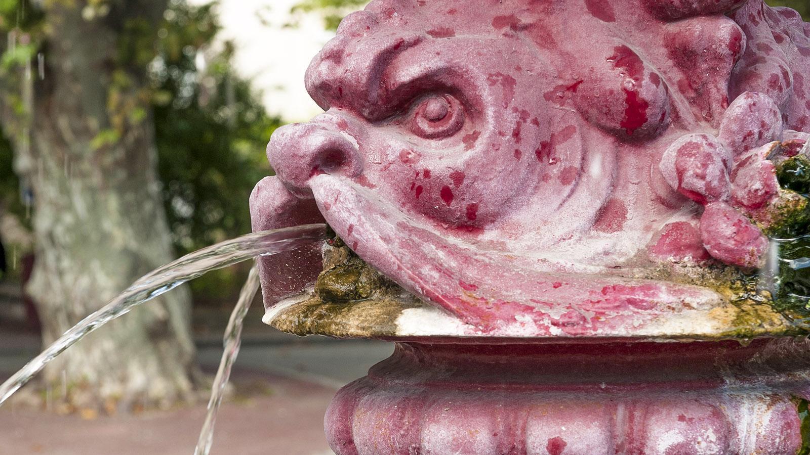 Viviers: Brunnen. Foto: Hilke Maunder