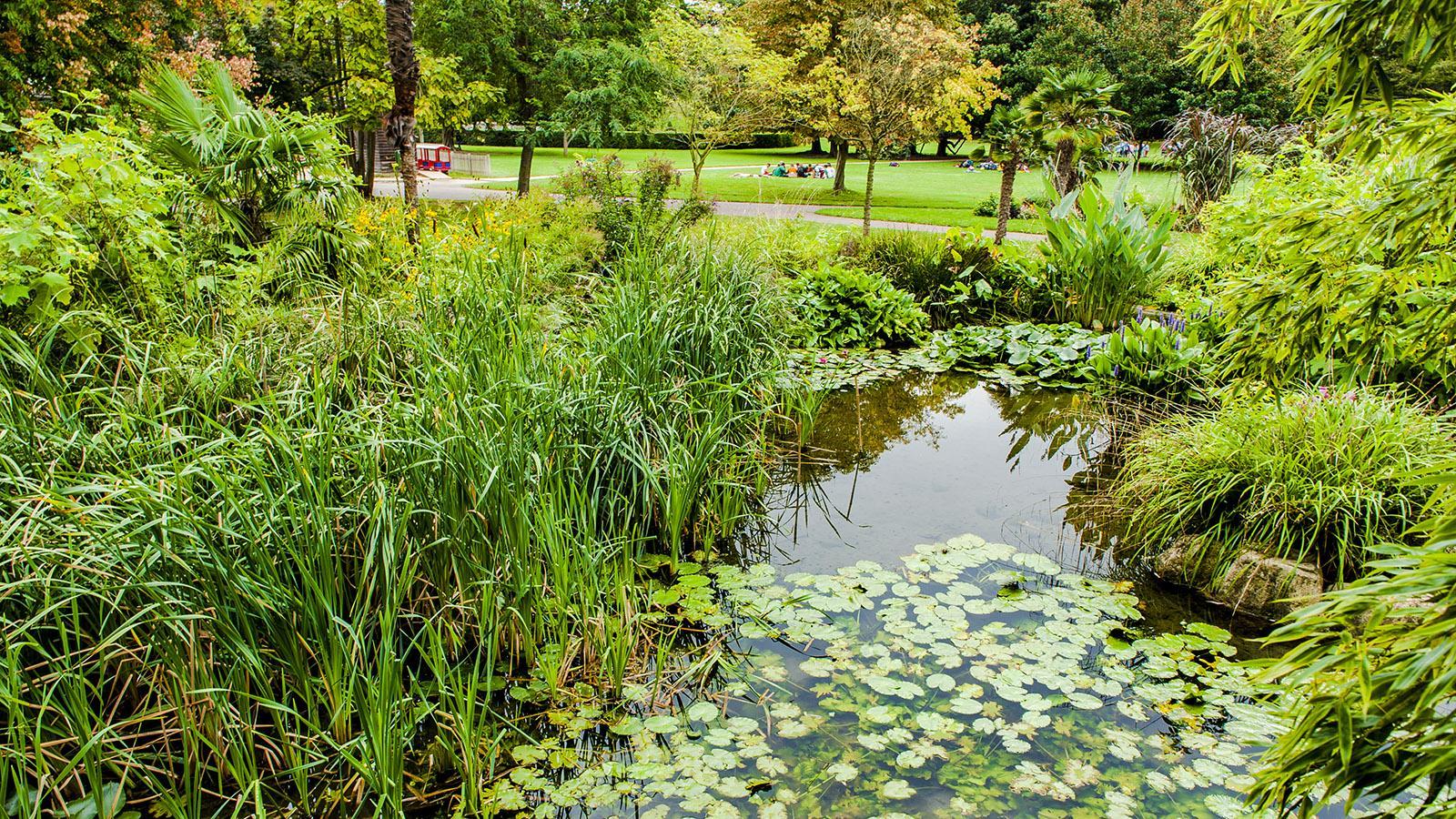 Parc Jouvet. Foto: Hilke Maunder