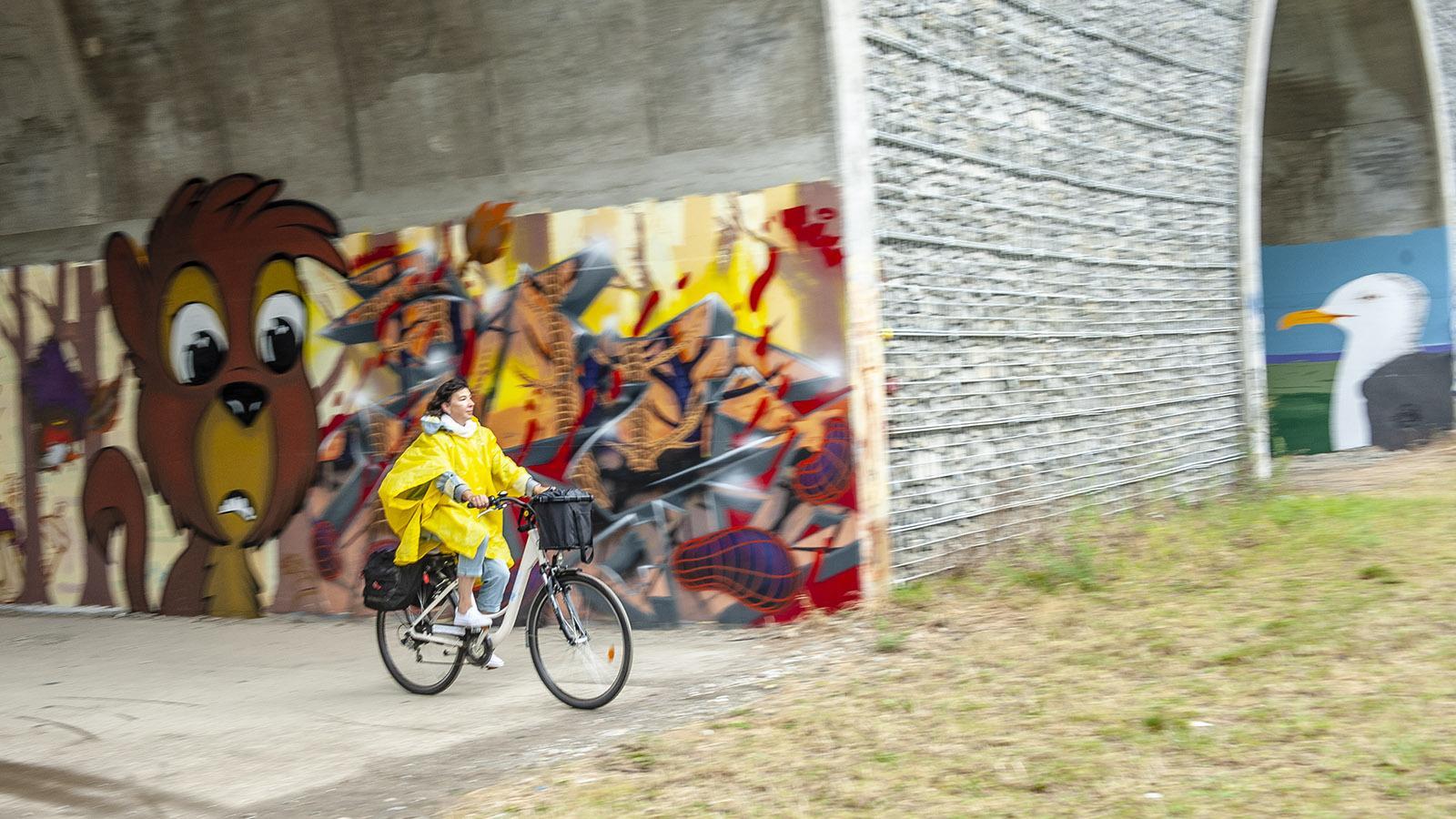 ViaRhôna, Per Rad entdecken wir die Street Art des Pont Maubeuge auf der Île Blaud. Foto: Hilke Maunder