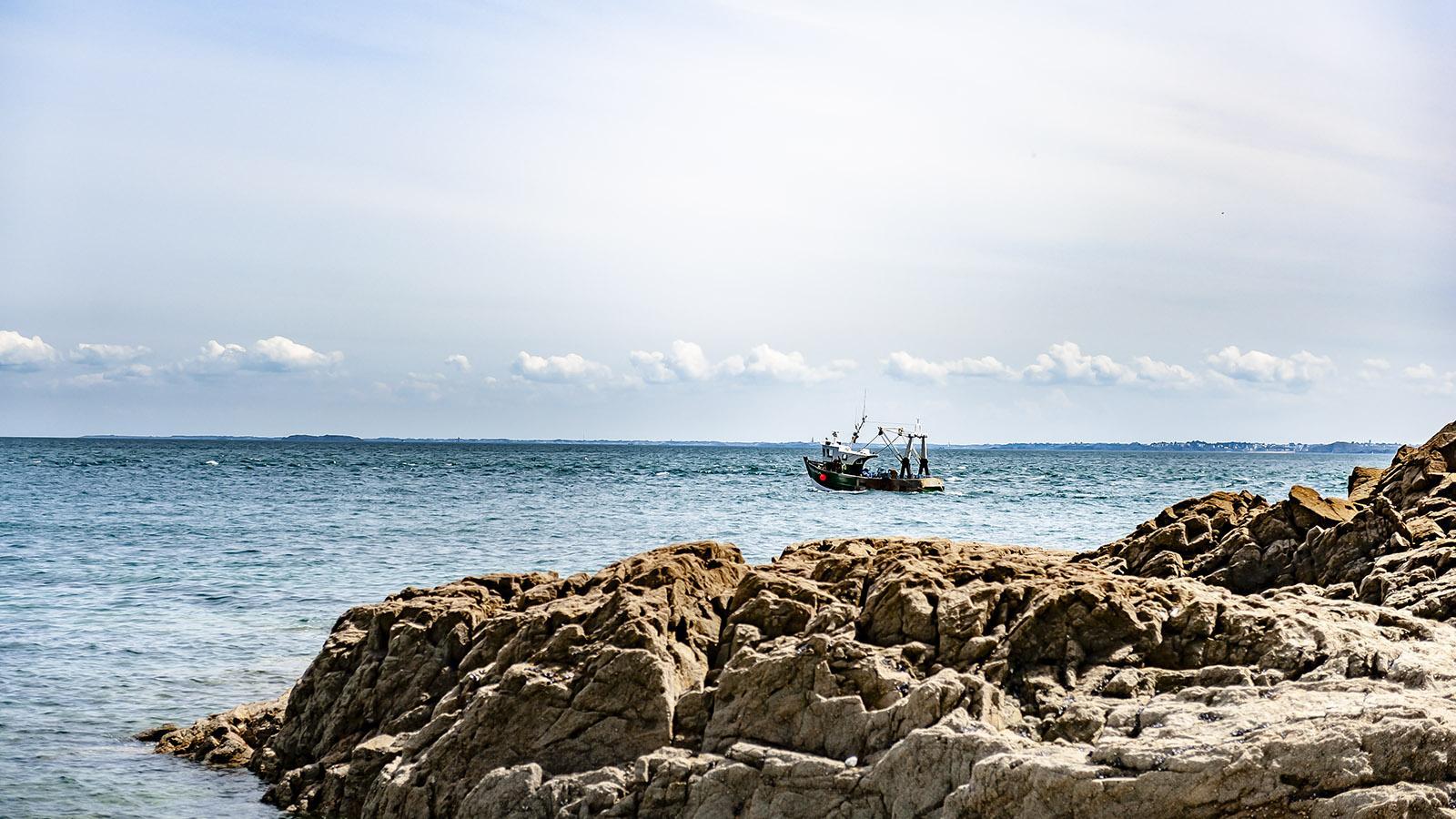 Côtes d'Armor: Ein Fischer fährt hinaus zum Fang. Foto: Hilke Maunder