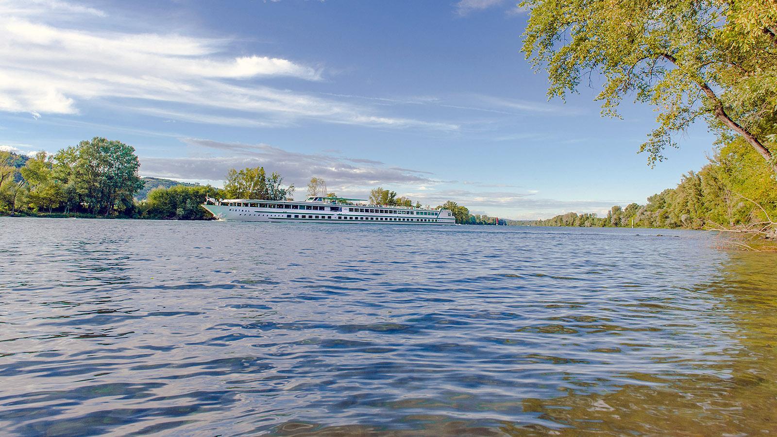 Auf der Rhône verkehren zahlreiche Flusskreuzschiffe - so auch hier bei Sablons südlich der Île de la Platière. Foto: Hilke Maunder
