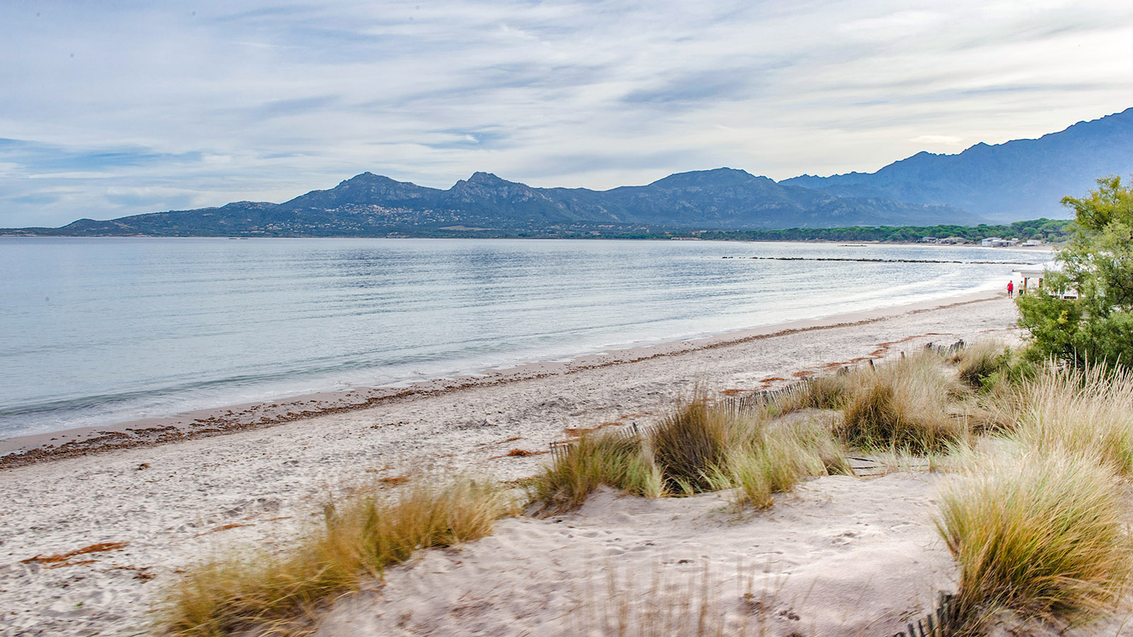 Strand bei Calvi. Foto: Hilke Maunder