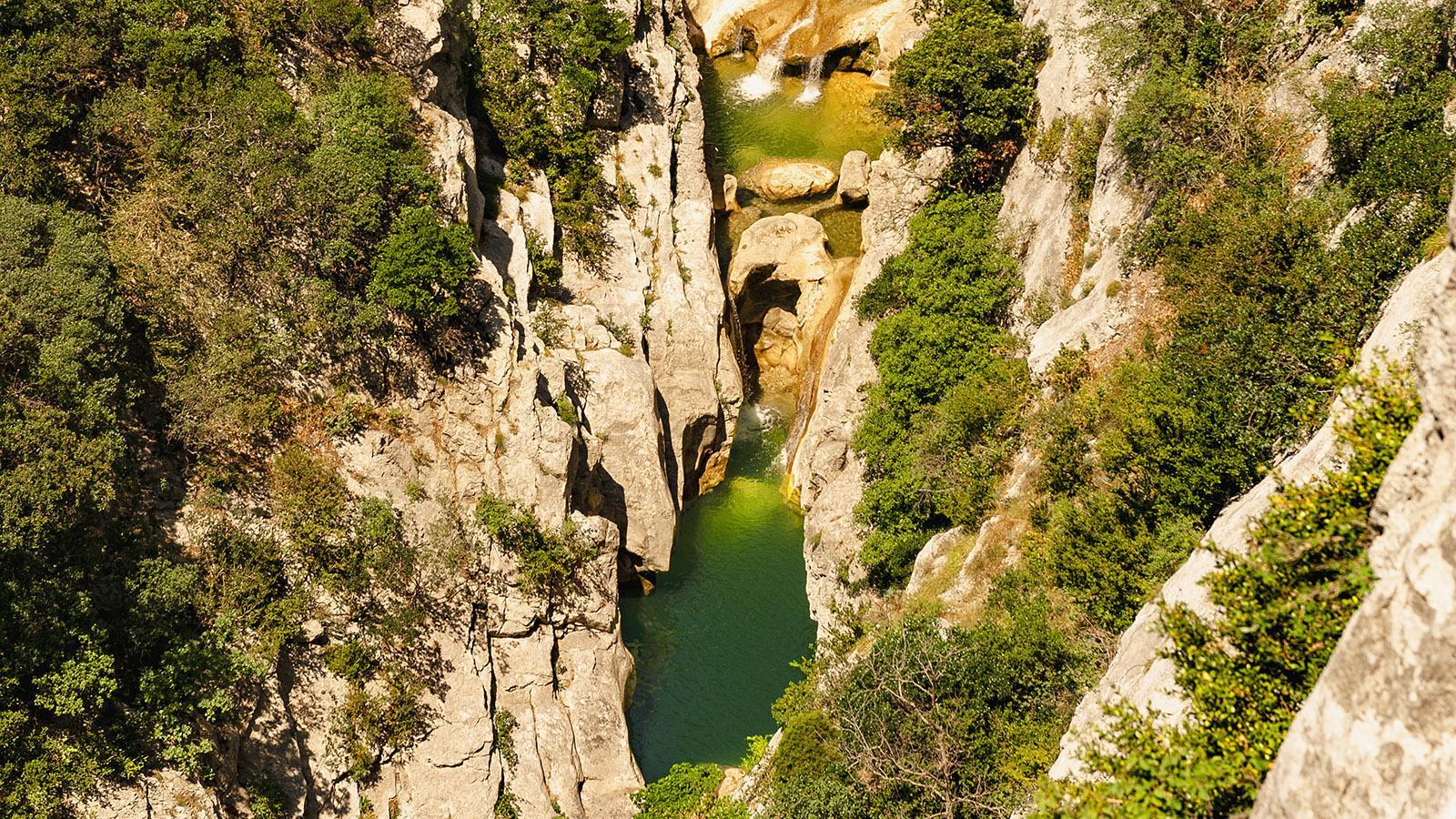 Fenouillèdes: die Badegumpen der Gorges de Galamus. Foto: Hilke Maunder
