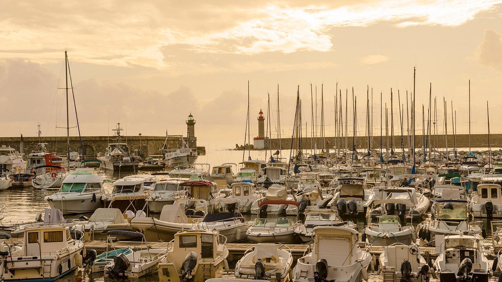 Bastia: Dicht belegt im Sommer - der Hafen der Sportbotte im Vieux-Port. Foto: Hilke Maunder