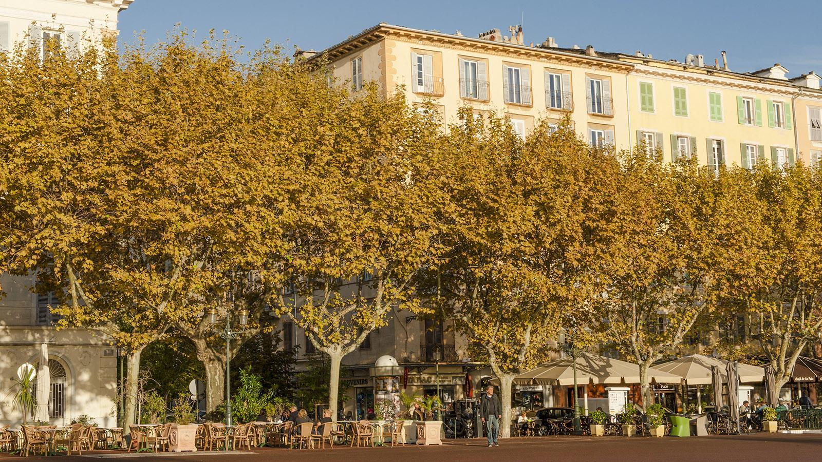 Bastia: Platanenschönheit - die Place Saint-Nicolas. Foto: Hilke Maunder