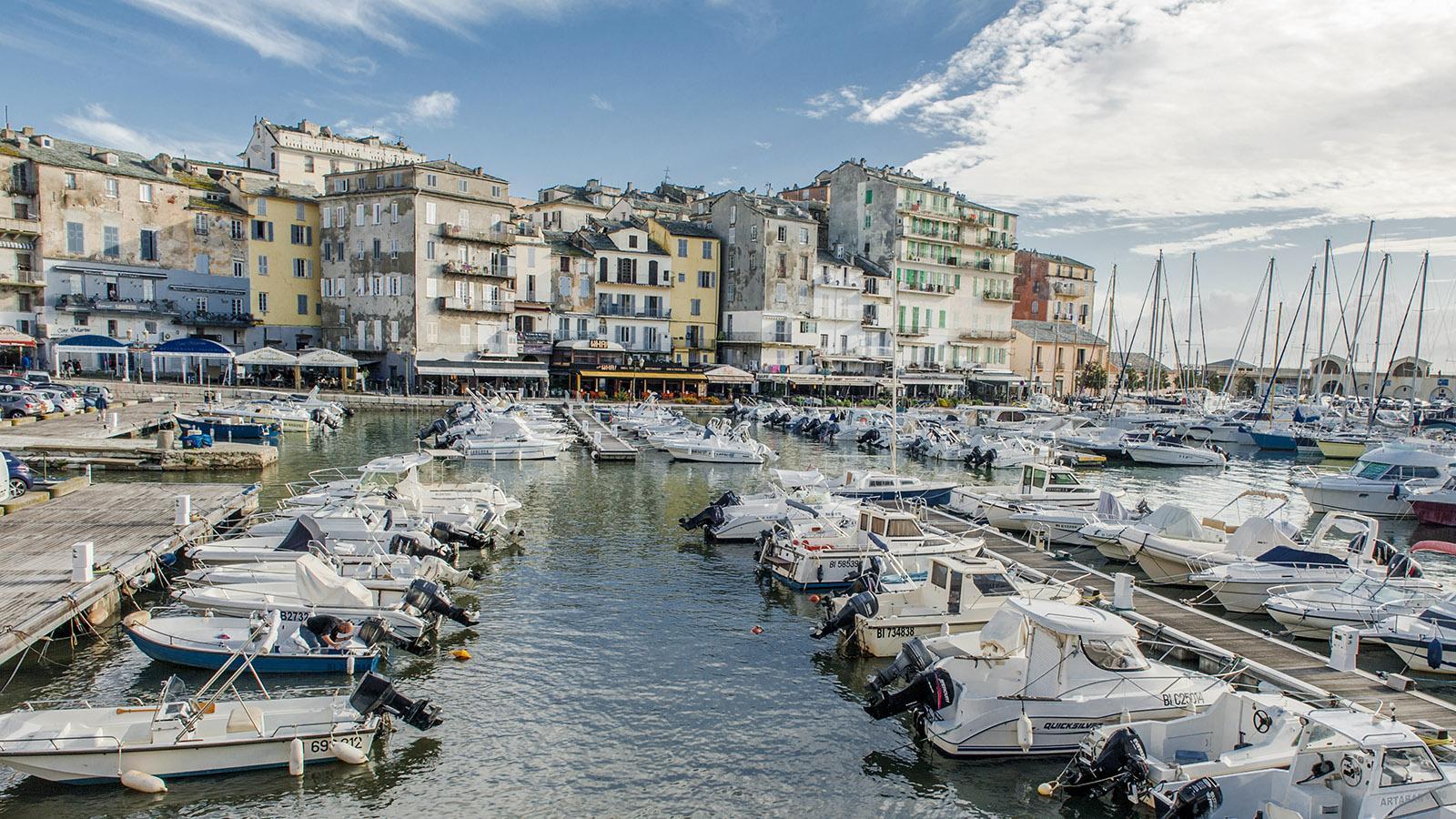Bastia: Der alte Hafen ist heute als Porto Cardo die Marina der Sportboote. Foto: Hilke Maunder