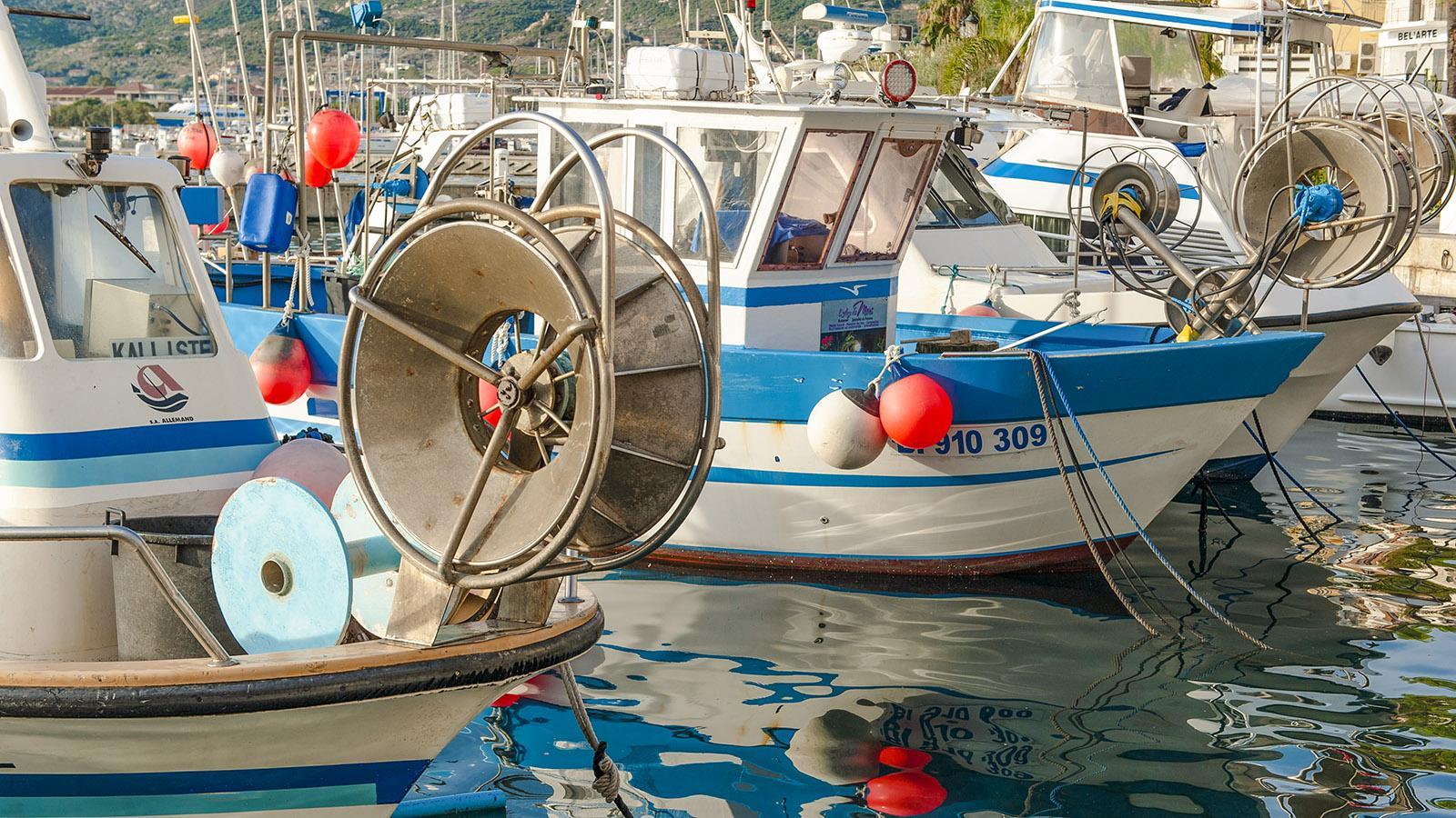 Im Hafen von Calvi. Foto: Hilke Maunder