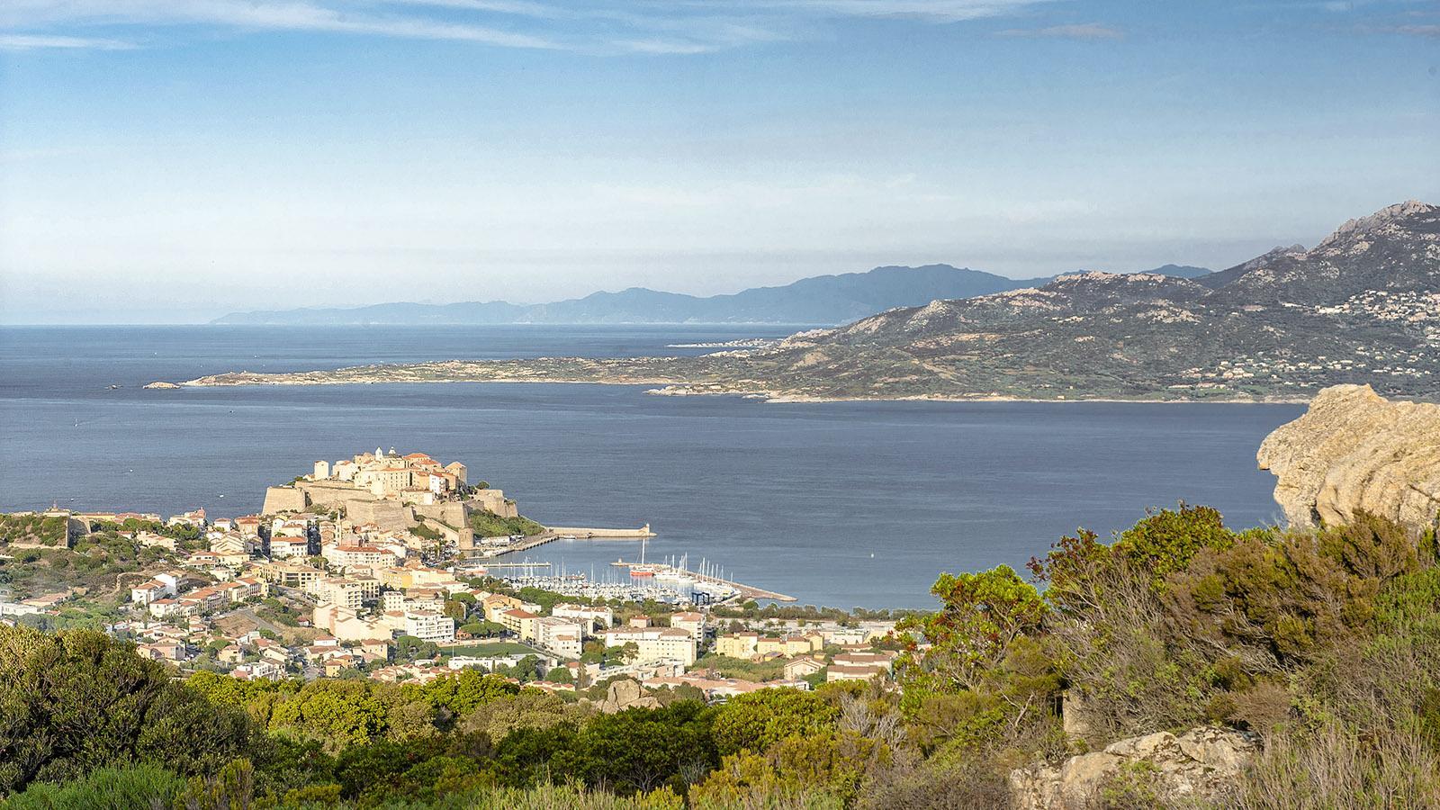 Blick von Notre-Dame de la Serra auf Calvi. Foto: Hilke Maunder