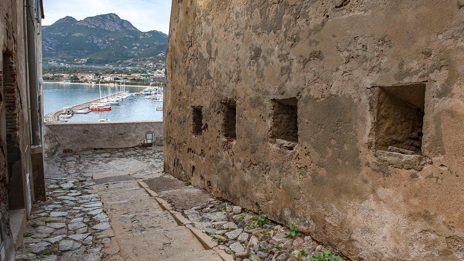 Calvi: Blick von der Zitadelle auf Stadt und Bucht. Foto: Hilke Maunder