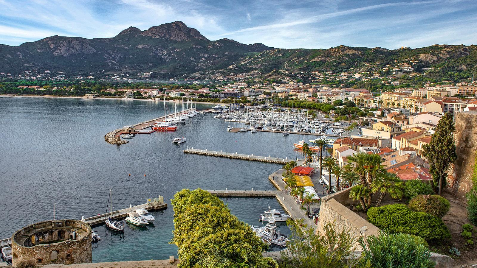 Blick auf die Bucht von Calvi von der Zitadelle. Foto: Hilke Maunder
