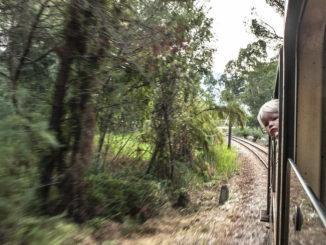 Bahnfahren wie einst... in der Micheline unterwegs in der Balagne. Foto: Hilke Maunder