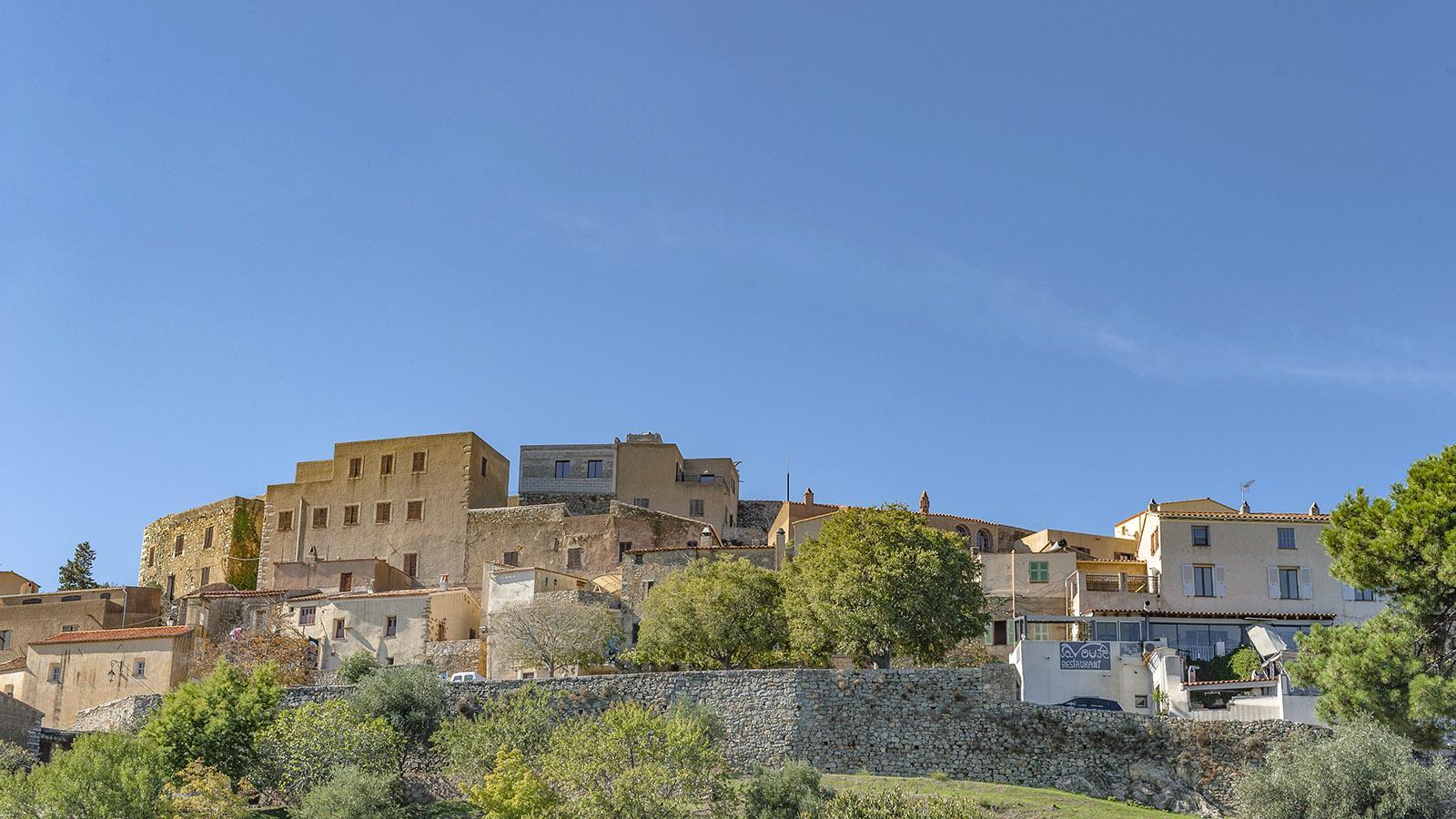 Die alte Bourg von Sant'Antonino hockt wie ein Adlernest auf einer Hügelspitze in der Balagne. Foto: Hilke Maunder
