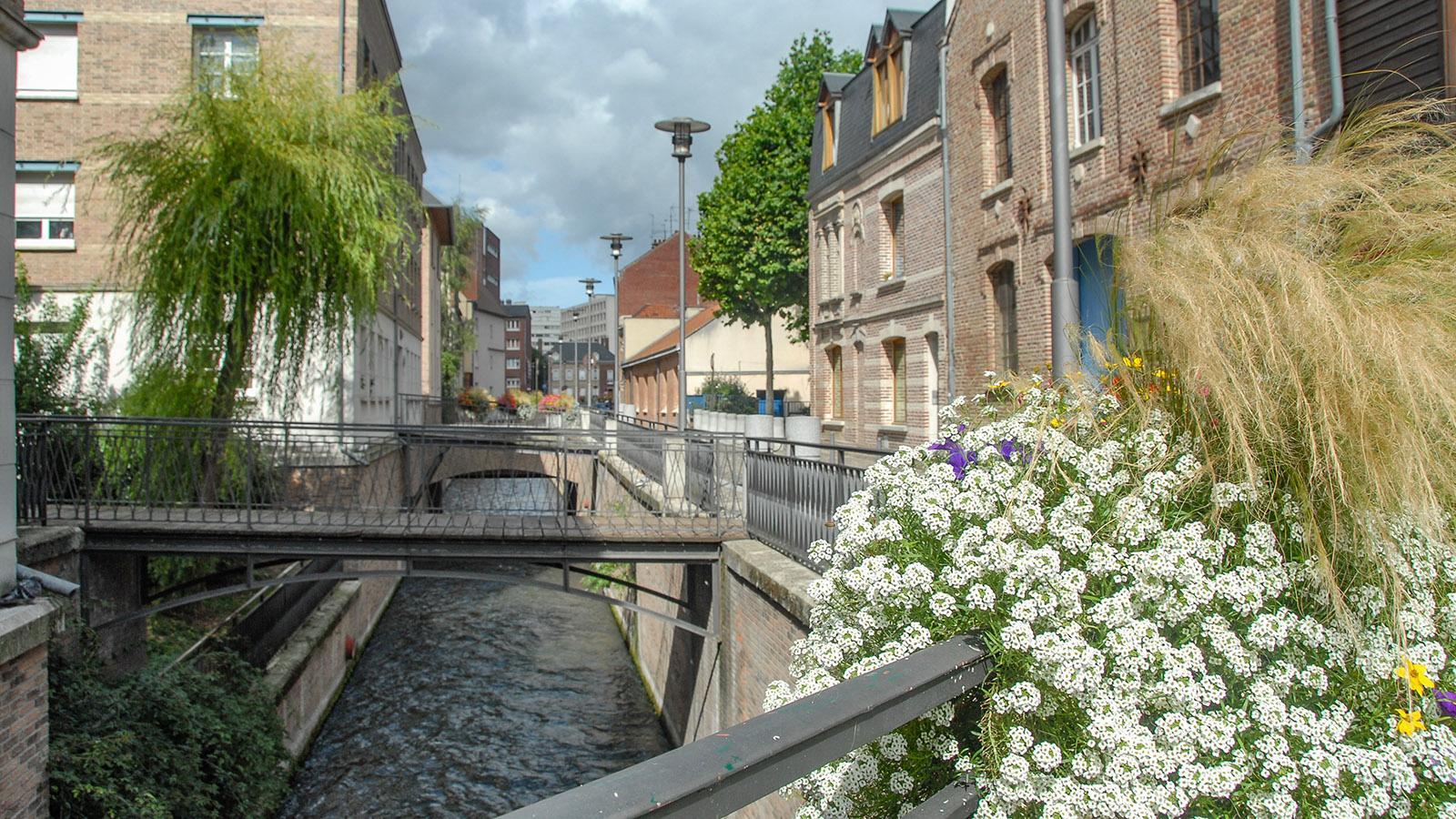 Amiens: Blumenschmuck an den Kanälen nahe der Markthalle. Foto: Hilke Maunder