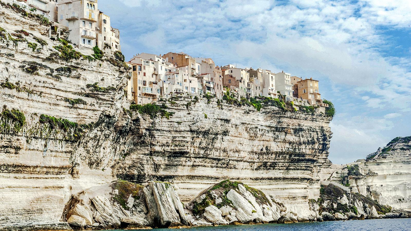 Die Oberstadt von Bonifacio. Foto: Hilke Maunder