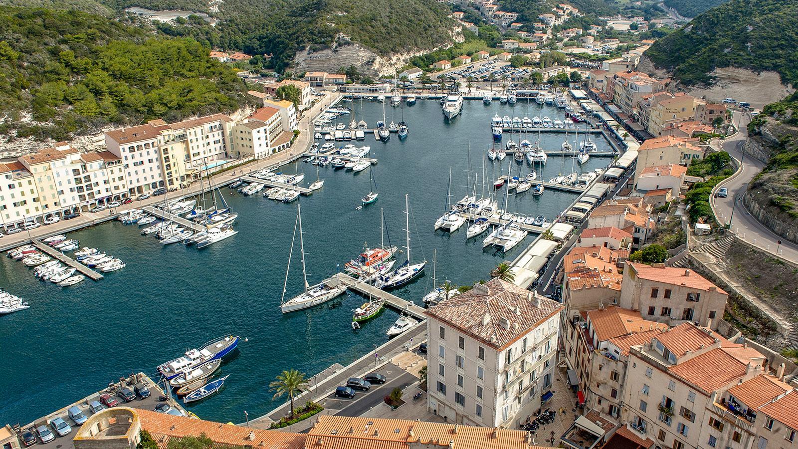 Blick auf den Hafen von Bonifacio von der Zitadelle. Foto: Hilke Maunder