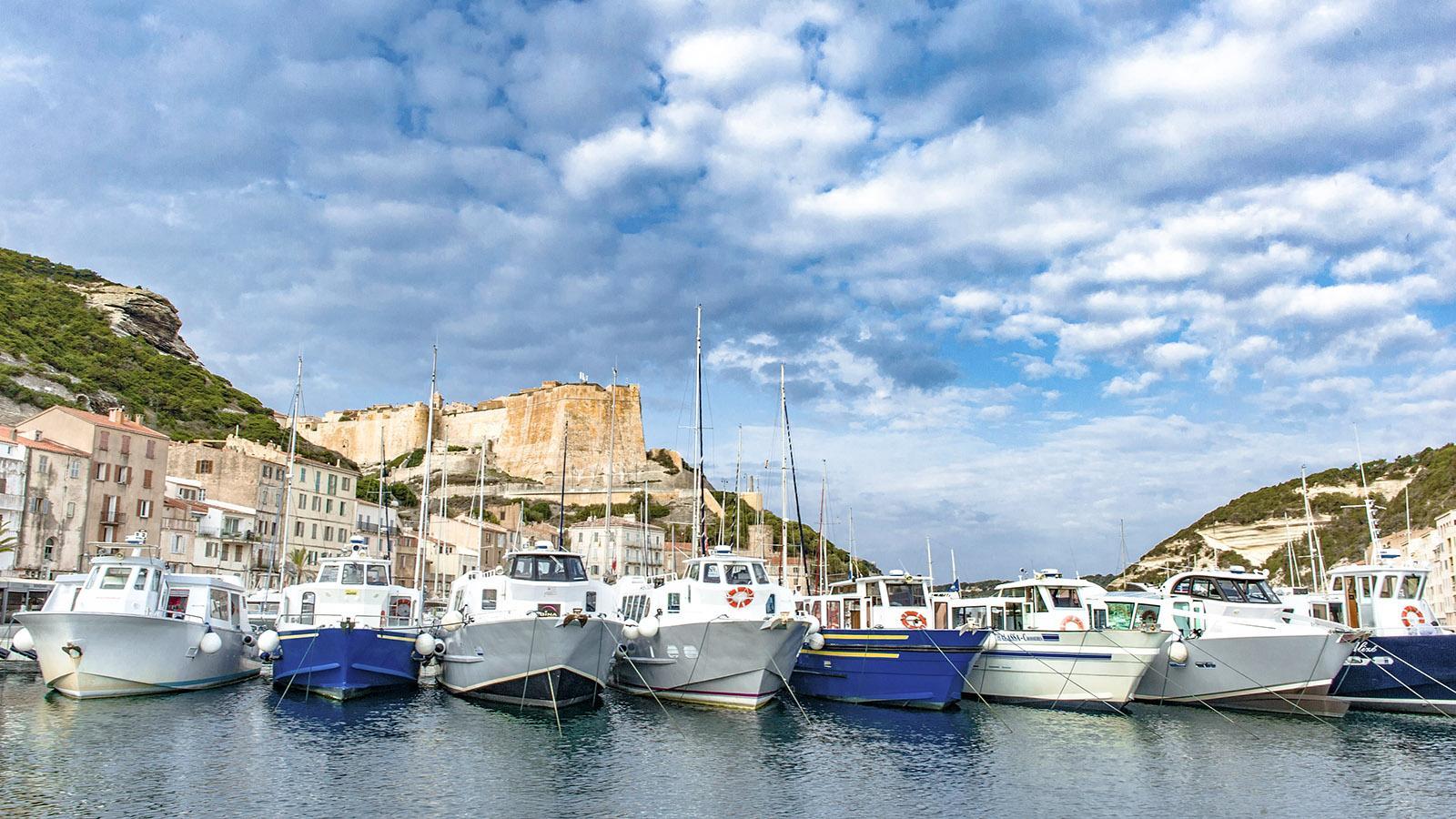 Der Hafen von Bonifacio. Foto: Hilke Maunder