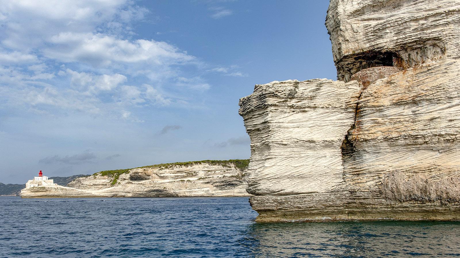 Die Steilküste von Bonifacio. Foto: Hilke Maunder