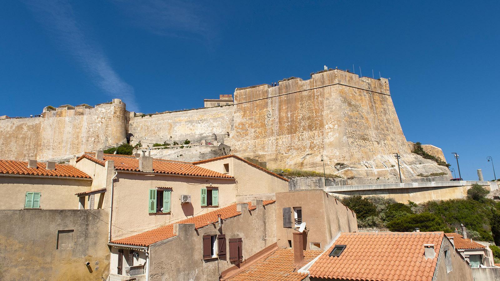 Die Zitadelle von Bonifacio thront über der Unterstadt am Hafen. Foto: Hilke Maunder