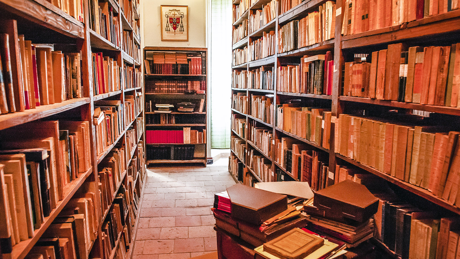 Palais des Évêques: die Bibliothek. Foto: Hilke Maunder