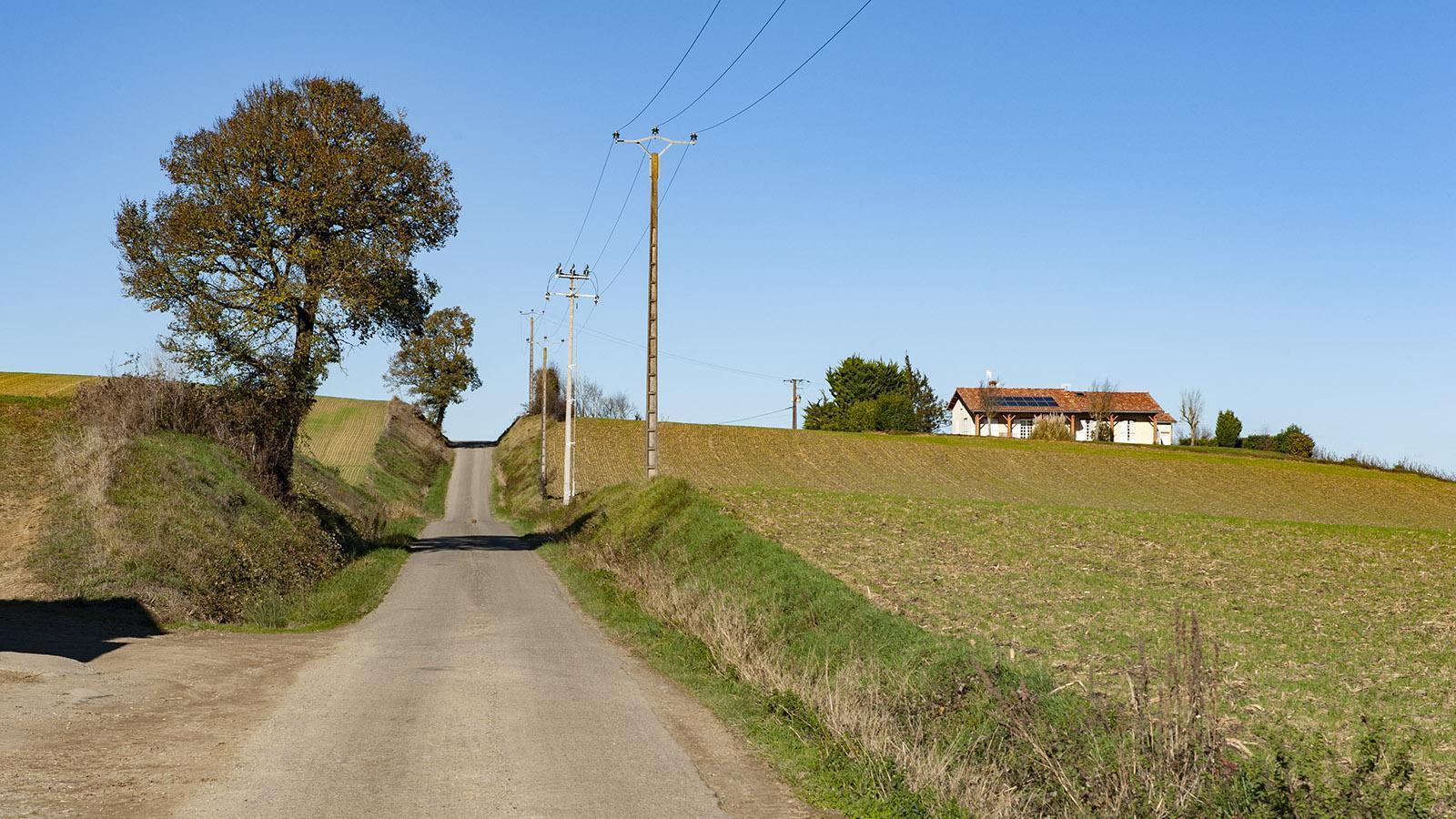 Eine einsame Landstraße führt zur Domaine Rey im Gers. Foto: Hilke Maunder