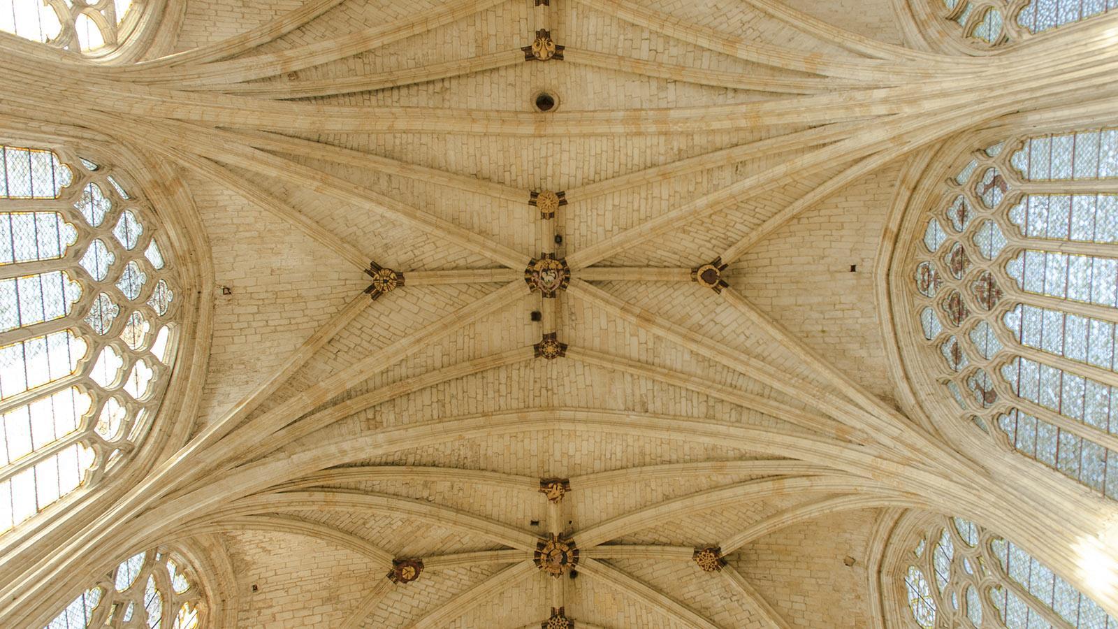 Condom, Gewölbe der Kathedrale. Foto: Hilke Maunder
