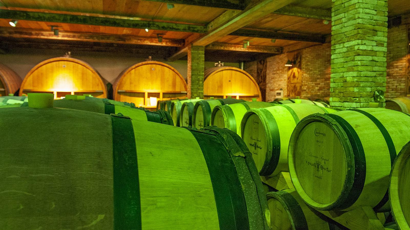 Der Weinkeller des Weinguts Saparale. Foto: Hilke Maunder
