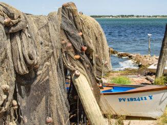 Fischboote am Ufer des Étang de Bages. Foto: Hilke Maunder