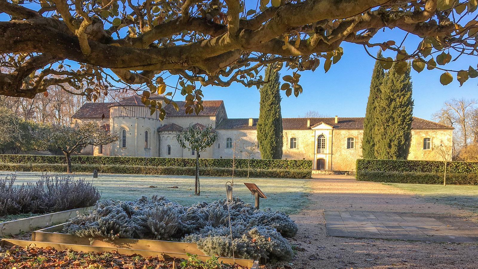 Der Klostergarten im Winter. Foto: Hilke Maunder
