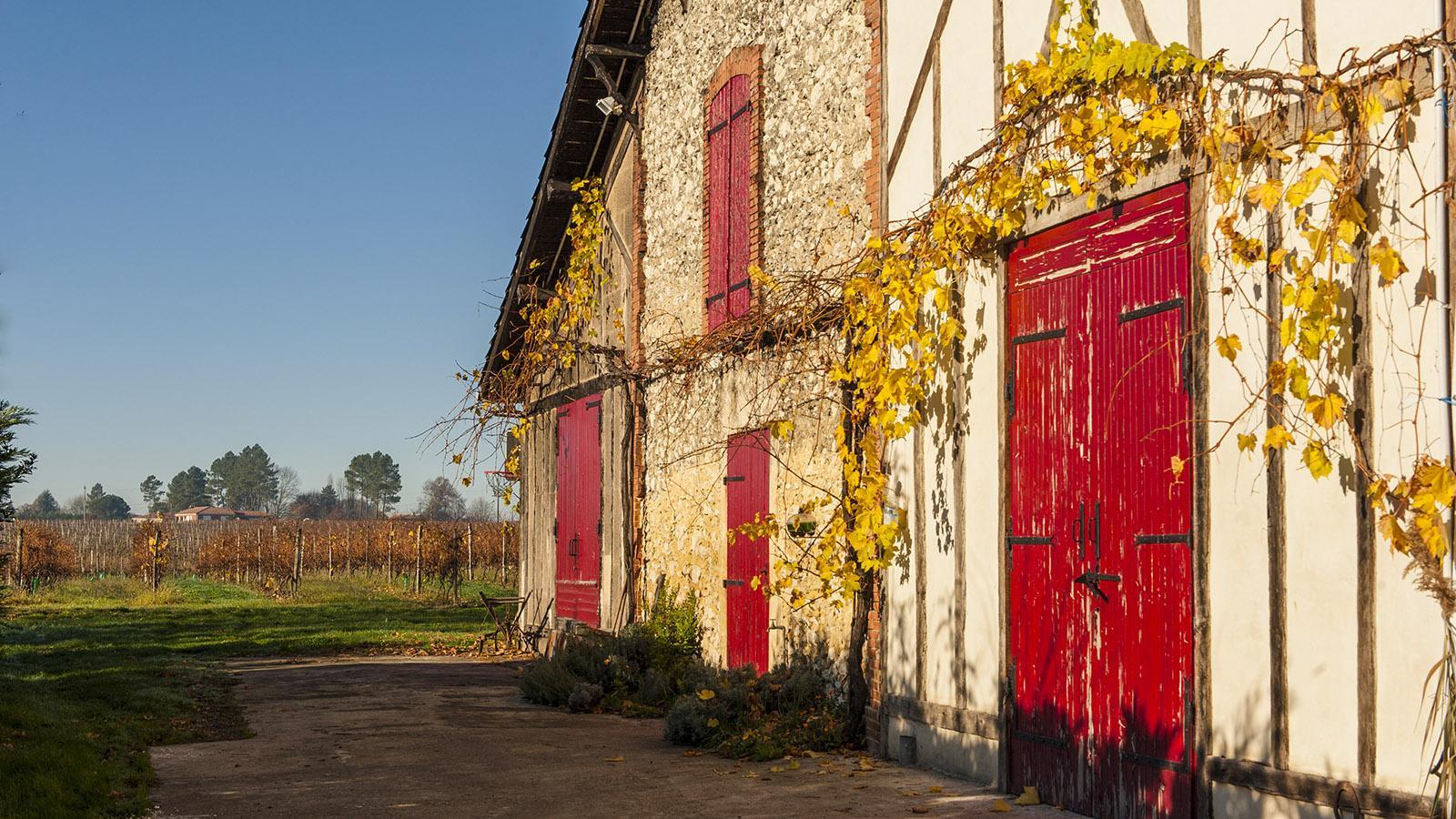 Château de Millet: Hinter diesem Tor reift der Armagnac in Eichenfässern zur Vollendung. Foto: Hilke Maunder