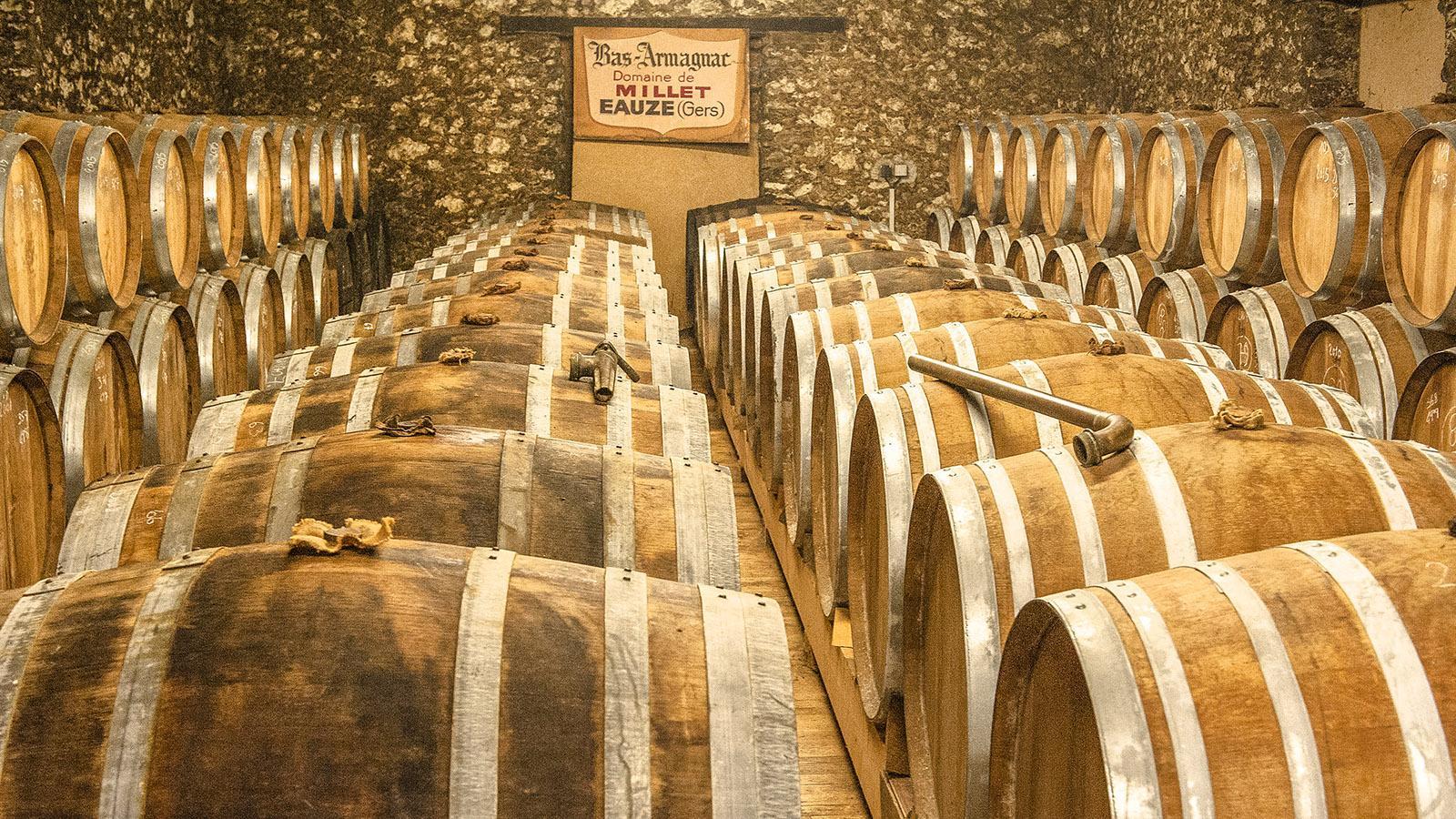 Der Armagnac-Keller des Château de Millet. Foto: Hilke Maunder