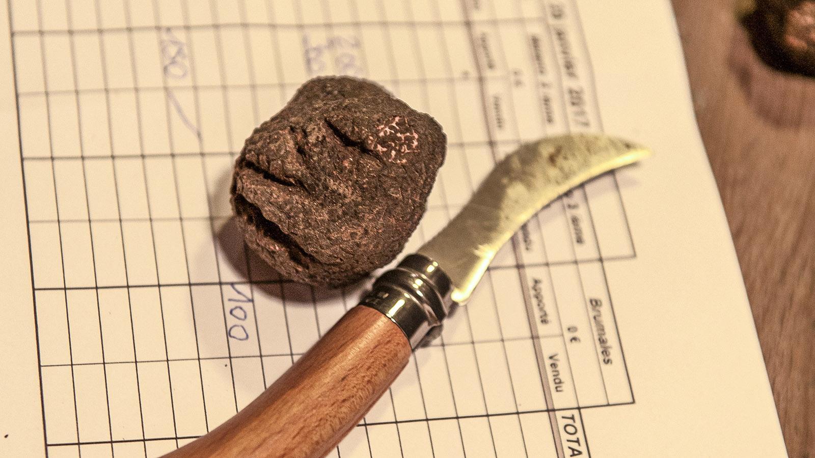 Saint-Paul-3-Châteaux: Jeder Trüffel wird einzeln bewertet. Foto: Hilke Maunder