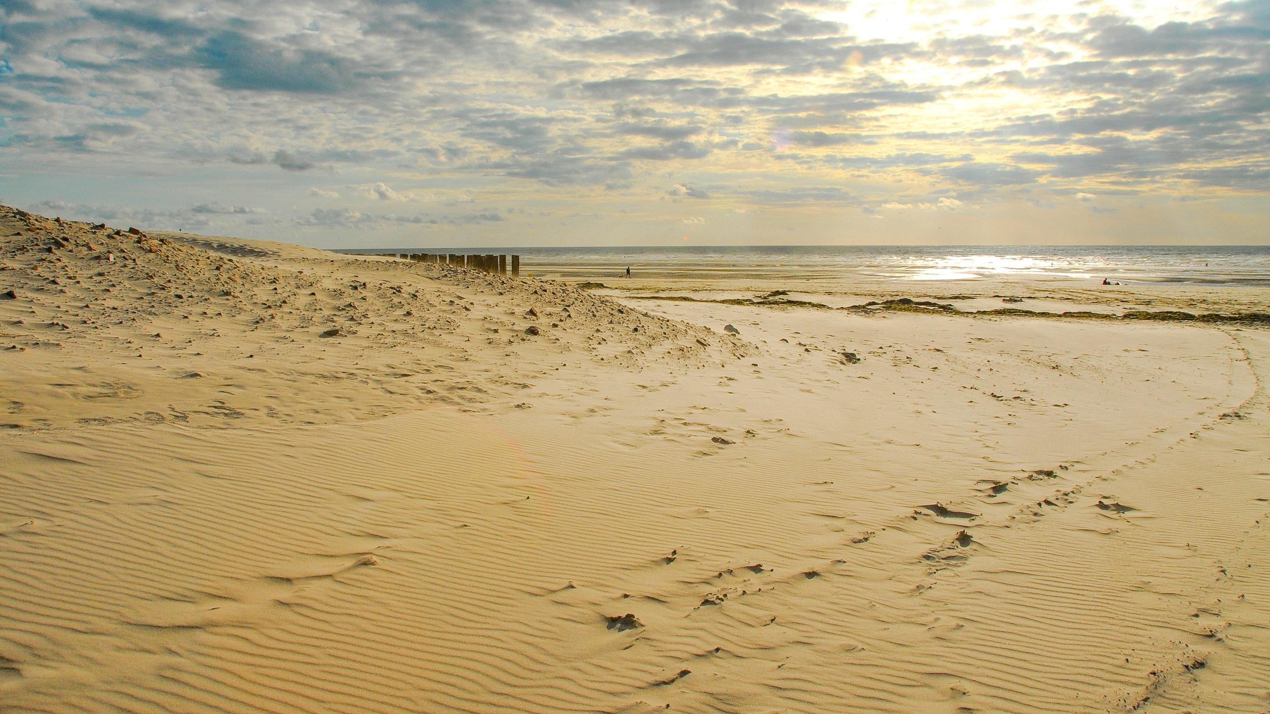 Opalküste: Berck-sur-Mer: Hinter den Dünen erstreckt sich feinsandig der Strand - 12 km lang! Foto. Hilke Maunder