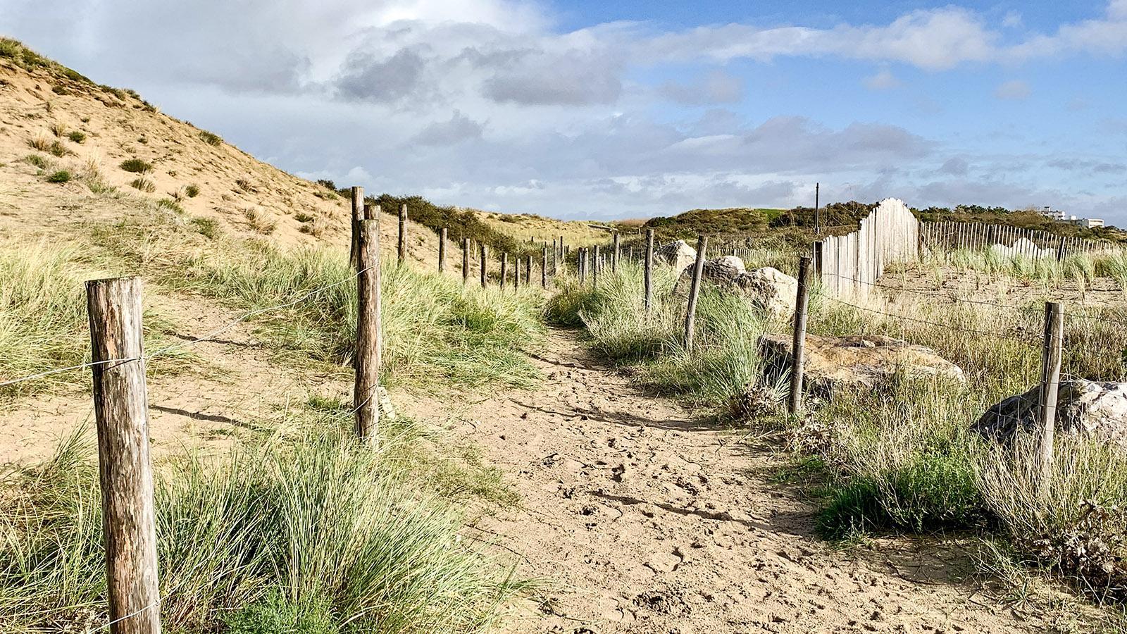 Opalküste: Unterwegs in de Dünen von Blériot-Plage. Foto: Hilke Maunder