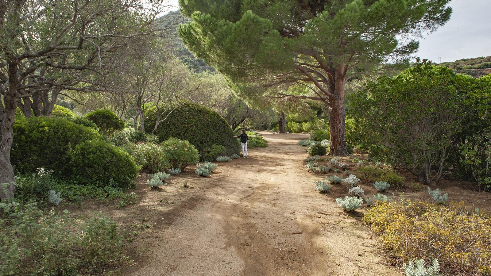 Parc de Saleccia. Foto: Hilke Maunder