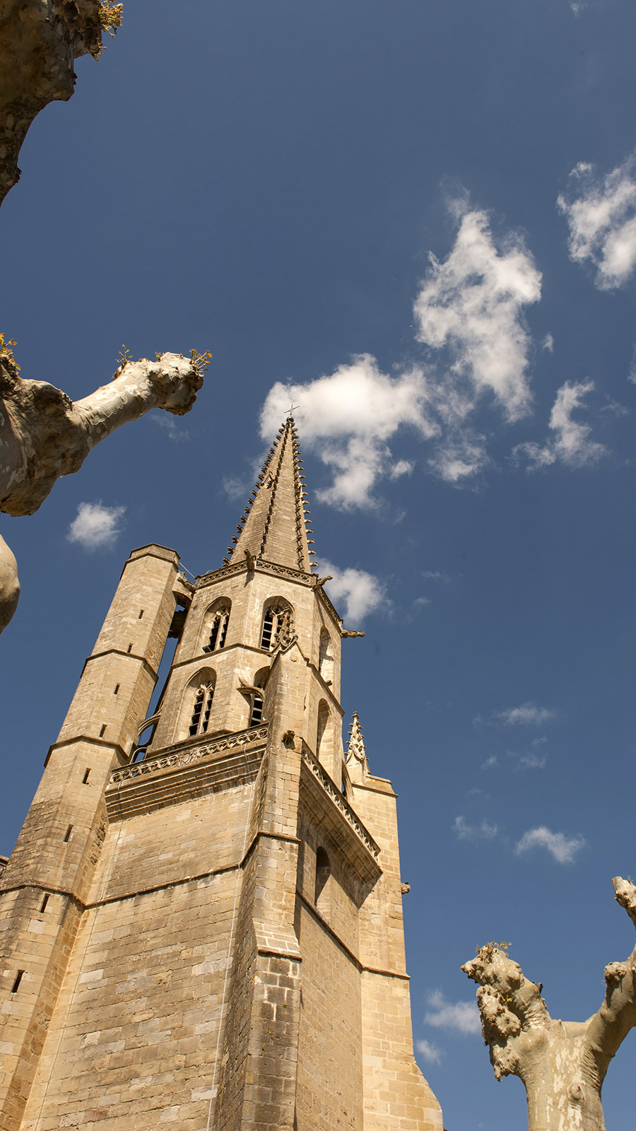 Mirepoix: der Kirchturm der Kathedrale. Foto: Hilke Maunder
