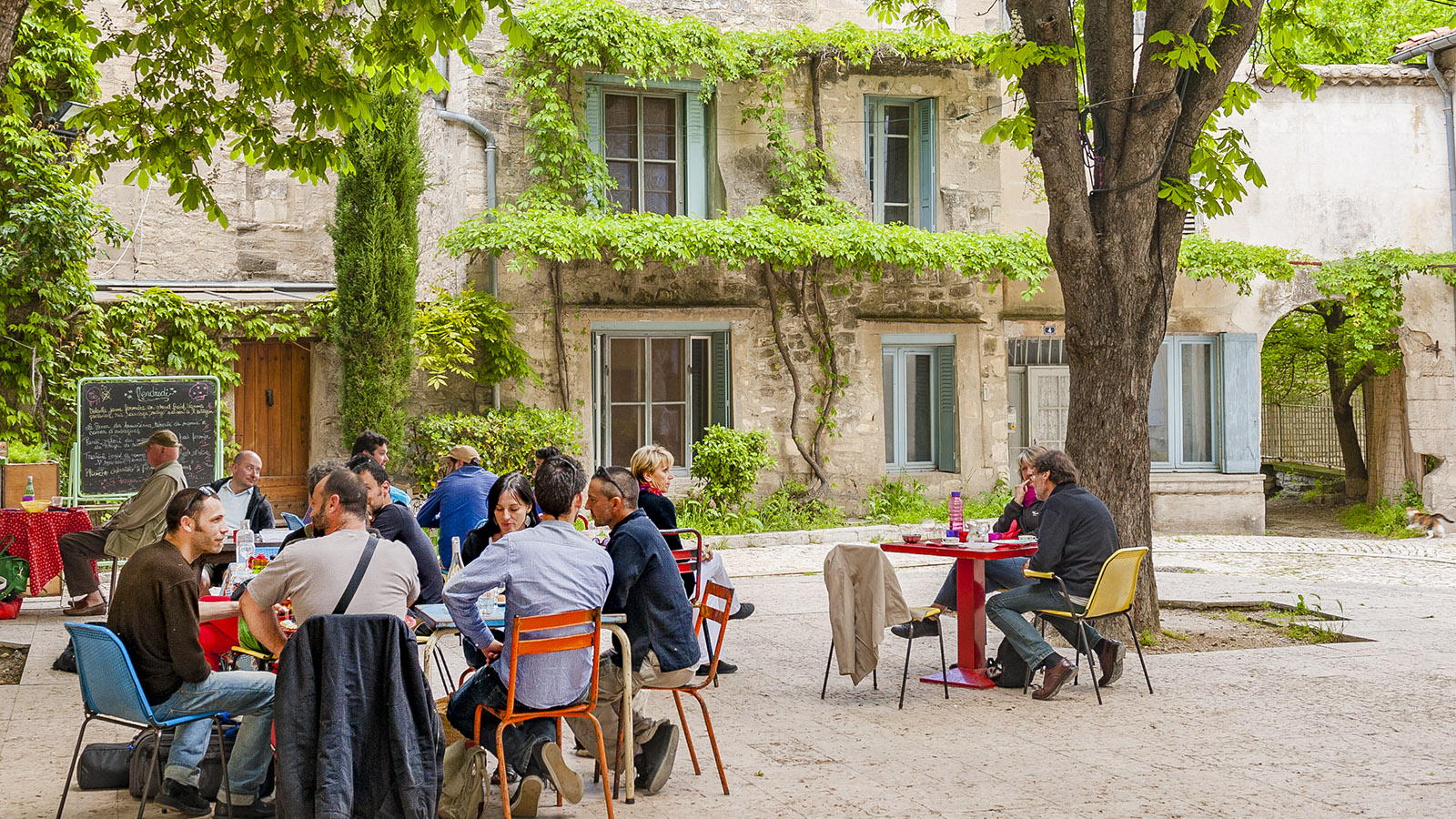 Platanenplatz in Saint-Rémy-de-Provence. Foto: Hilke Maunder
