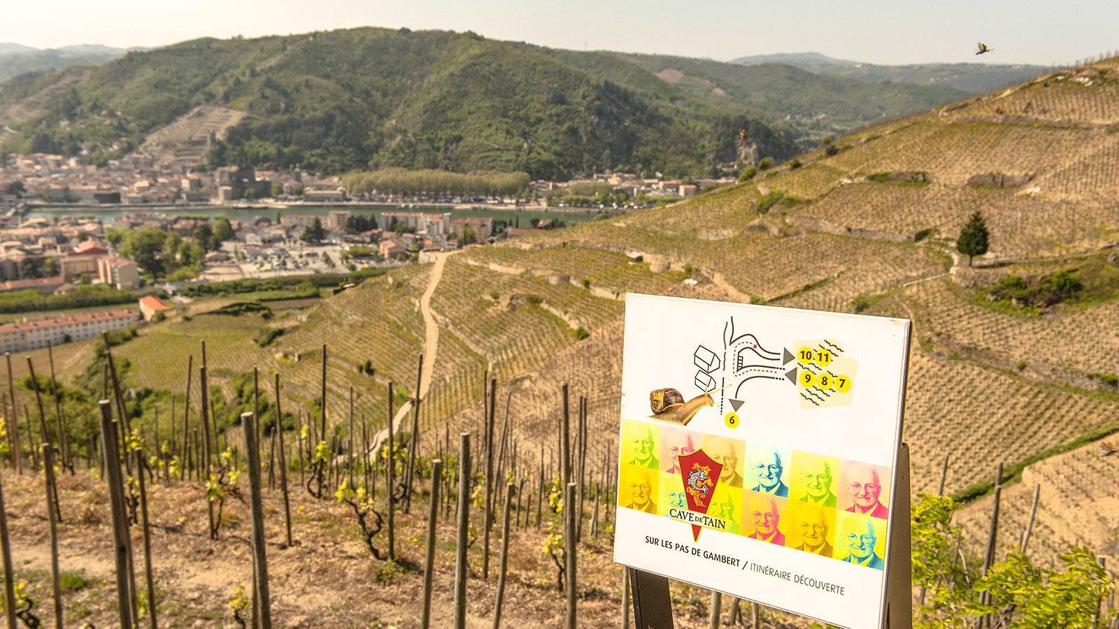 Der Weinlehrpfad der Cave de Tain in den Weinbergen von Tain-l'Hermitage. Foto: Hilke Maunder