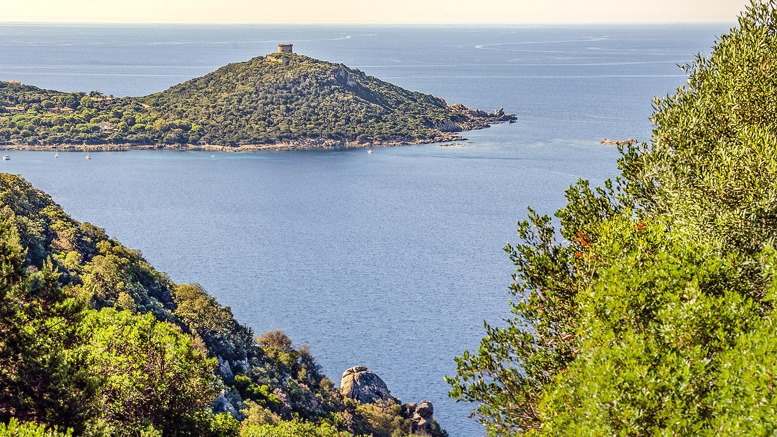Der Nachbarturm des Genueser-Wachtturms von Campomoro