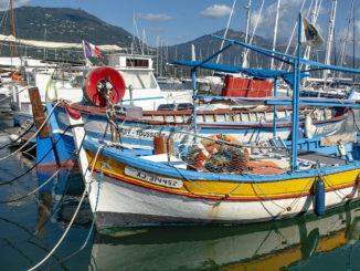Propriano: Im Jachthafen findet ihr auch noch einige der traditionsreichen bunten Pointu-Fischerboote. Foto: Hilke Maunder