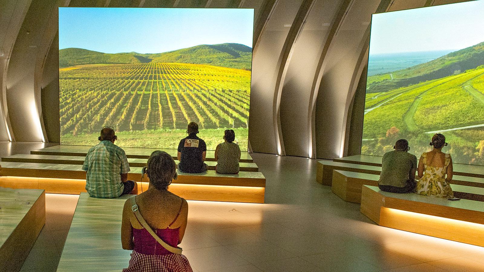 Bordeaux: Cité du Vin. Foto: Hilke Maunder