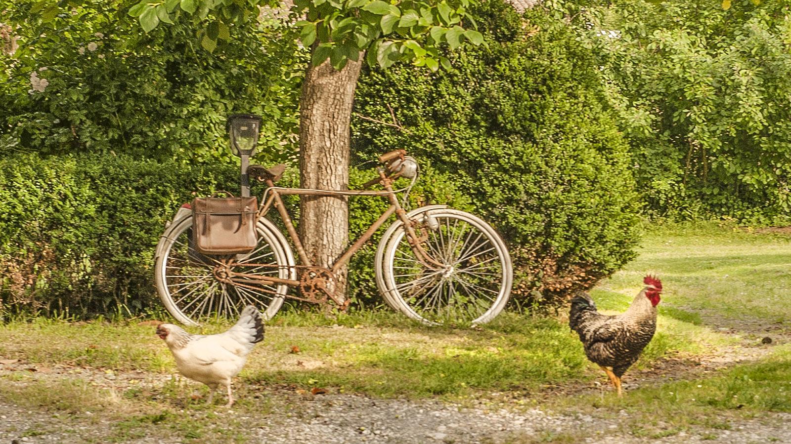 Stillleben in Blaye. Foto: Hilke Maunder