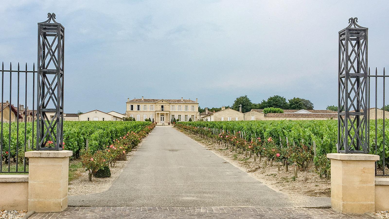 Château im Médoc. Foto: Hilke Maunder