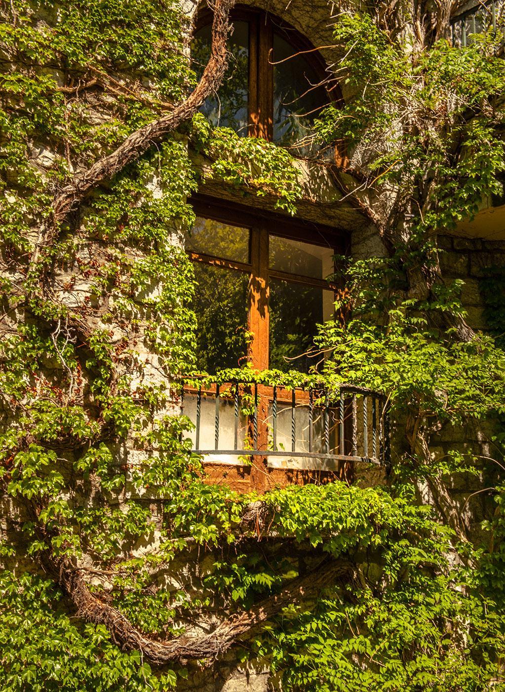Völlig vom Efeu erobert: das Grand Hotel von Molitg-les-Bains. Foto: Hilke Maunder