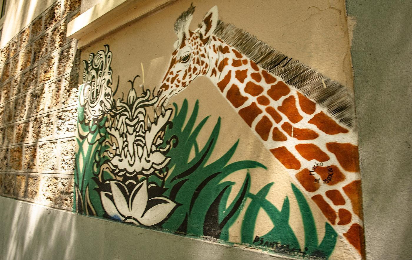 Grüne Street Art, gespottet in der Rue des Rigoles. Foto: Hilke Maunder